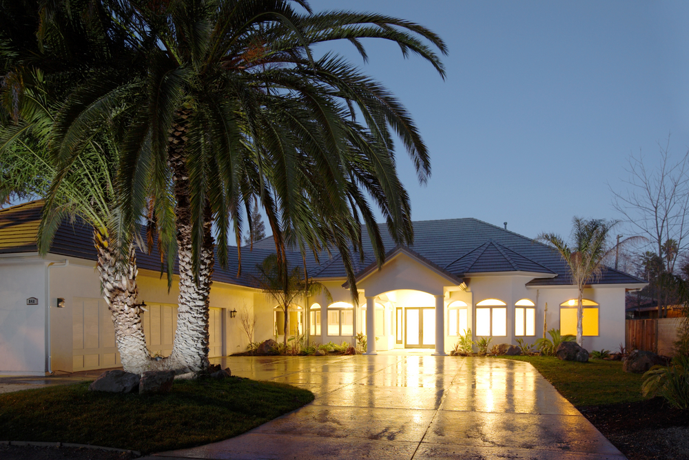 Palm trees in Tampa Bay circular drives can be illuminated by Outdoor Lighting Perspectives of Clearwater & Tampa Bay