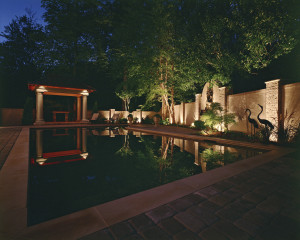 Tampa Bay pools come alive at night with landscape lighting