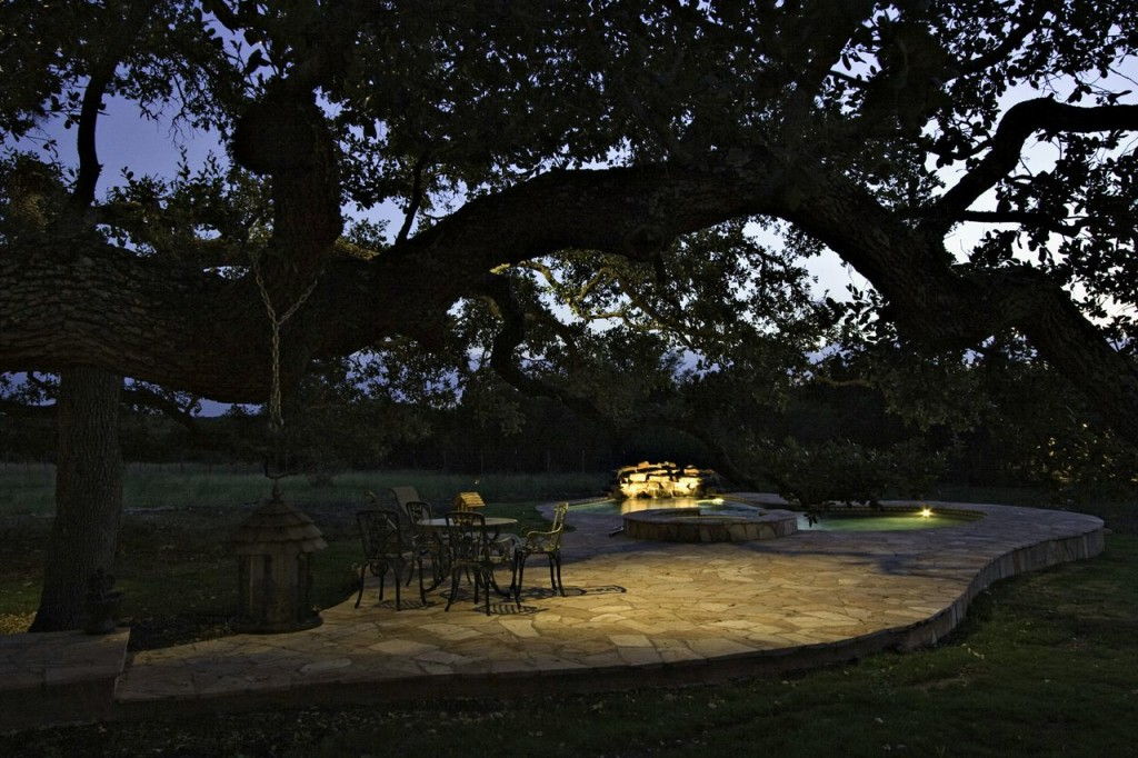 If you have large trees, like live oaks, in the area, moonlighting can be particularly striking.