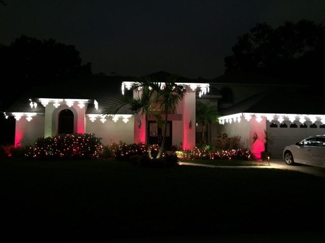 Clearwater and Tampa romantic  outdoor lighting designs.