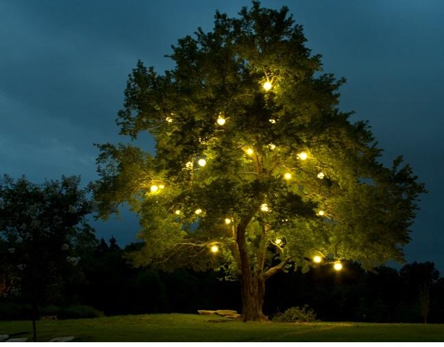 Orb lighting used at Arrington Vineyards in Arrington TN