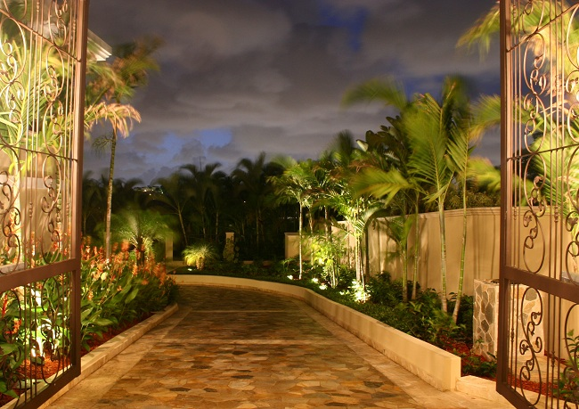 Transform your tree lined drive into a moonlight drive with palm tree lighting used in texas landscape border aloadofball Choice Image