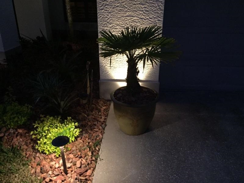 Clearwater landscape lighting